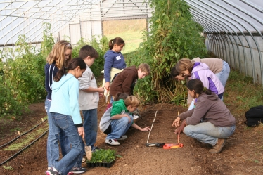 Montgomery School: Fourth grade students working with a Maysie's Farm teacher prepare to transplant spinach which will be served to them this winter in their school dining room